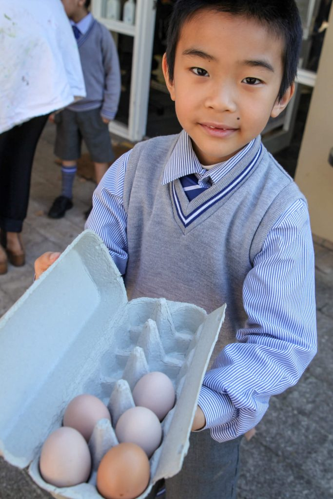 Year 1 student with eggs from the chickens