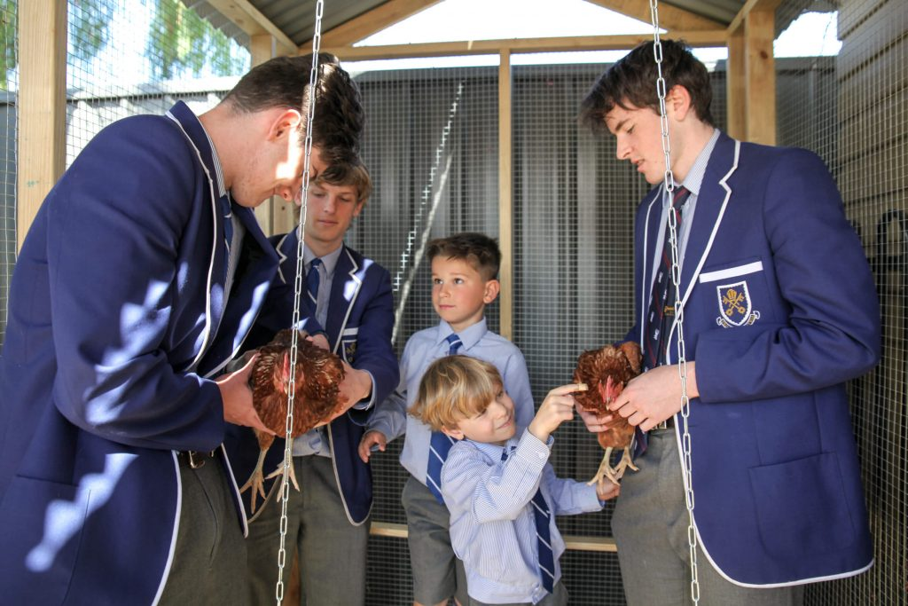 Years 1 and 10 students in the chook shed